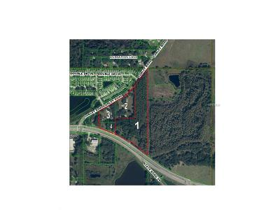 Wesley Chapel Residential Lots & Land For Sale: 30607 State Road 54