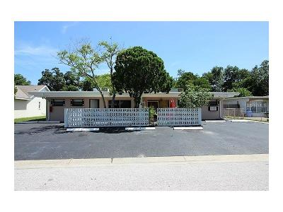 Dade City, Apollo Beach, St Petersburg, Wesley Chapel, San Antonio, Clearwater, Lithia, Seffner, Land O Lakes, Ruskin, Temple Terrace Rental For Rent: 7112 6th Avenue N #B