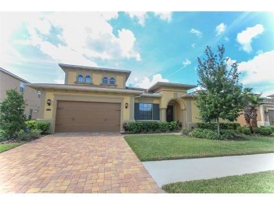 Wesley Chapel Single Family Home For Sale: 32044 Pinfeld Drive