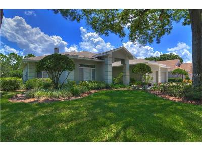 Valrico Single Family Home For Sale: 5113 Rolling Fairway Drive