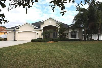 Hernando County, Hillsborough County, Pasco County, Pinellas County Single Family Home For Sale: 19931 Dolores Ann Court