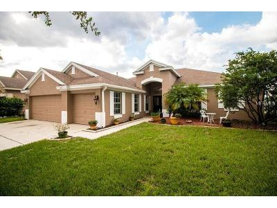 Riverview Single Family Home For Sale: 7203 Colonial Lake Drive