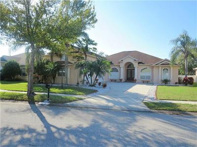 Valrico Single Family Home For Sale: 1040 Carriage Park Drive