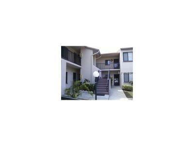 Dunedin Condo For Sale: 2382 Lake Heather Heights Court #2382