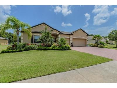 Palmetto Single Family Home For Sale: 6206 75th Avenue E