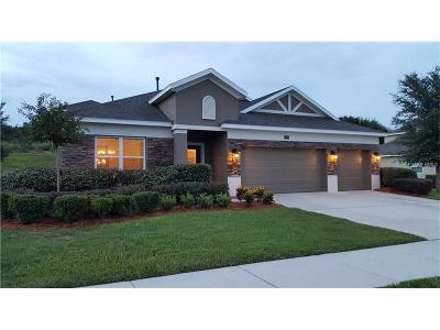 Clermont Single Family Home For Sale: 12524 Hammock Pointe Circle