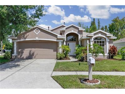 Wesley Chapel Single Family Home For Sale: 29227 Crossland Drive