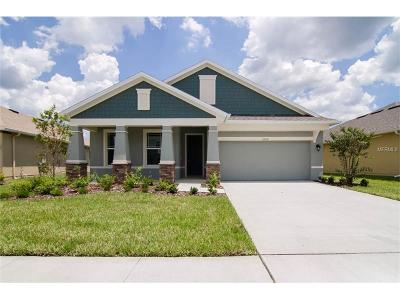 Wesley Chapel Single Family Home For Sale: 32618 Rapids Loop