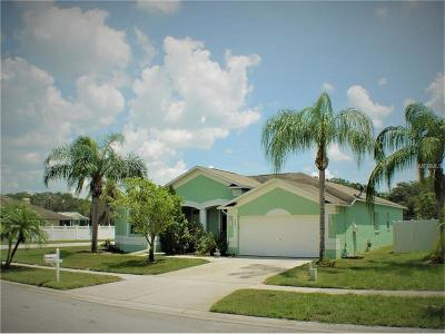 Valrico Single Family Home For Sale: 3341 Pine Top Drive