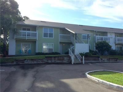 Palm Harbor Condo For Sale: 455 Alt 19 S #110