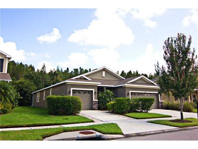 Wesley Chapel Single Family Home For Sale: 27639 Stonecreek Way