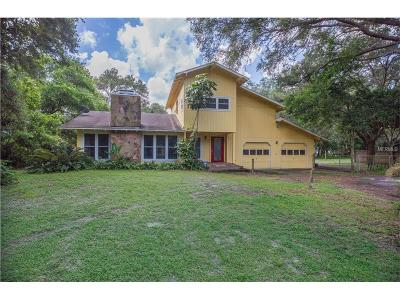 Odessa Single Family Home For Sale: 16801 Boy Scout Road