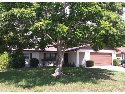 Spring Hill Single Family Home For Sale: 7087 Landmark Drive