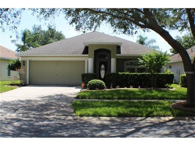 Valrico Single Family Home For Sale: 1117 Lumsden Pointe Boulevard