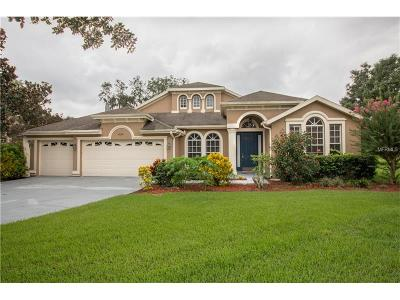 Valrico Single Family Home For Sale: 2009 Wexford Green Drive