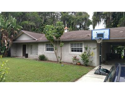 Lutz Single Family Home For Sale: 19808 Rhea See Drive