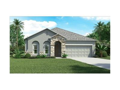 Hernando County, Hillsborough County, Pasco County, Pinellas County Single Family Home For Sale: 32634 Harmony Oaks Drive