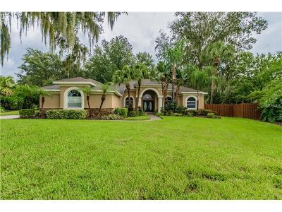 Valrico Single Family Home For Sale: 2834 Mossy Timber Trail