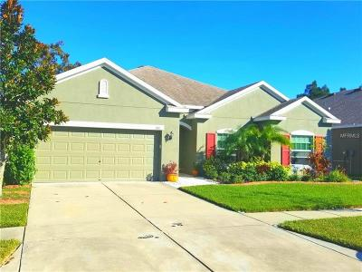 Ruskin Single Family Home For Sale: 1201 Parker Den Drive