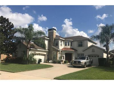 Valrico Single Family Home For Sale: 2713 Park Meadow Drive