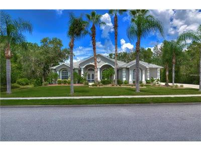New Port Richey Single Family Home For Sale: 11419 Lakeview Drive