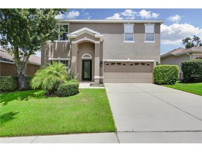 Valrico Single Family Home For Sale: 1138 Emerald Hill Way