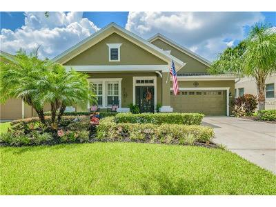 Tampa Single Family Home For Sale: 6306 Sea Lavender Lane