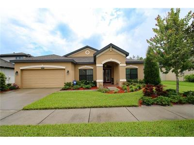 Land O Lakes FL Single Family Home For Sale: $330,000