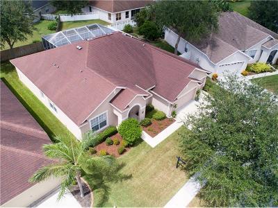 Riverview Single Family Home For Sale: 12519 Safari Lane