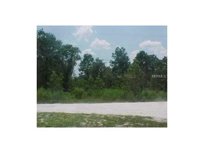 Land O Lakes Residential Lots & Land For Sale: 6937 Land O Lakes Boulevard