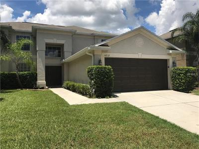 Valrico Single Family Home For Sale: 4212 Balington Drive