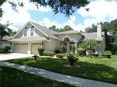 Tampa Single Family Home For Sale: 10118 Whisper Pointe Drive