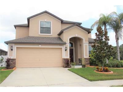 Riverview Single Family Home For Sale: 13250 Wellington Hills Drive