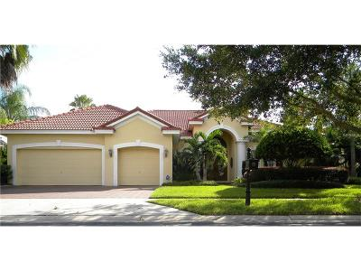 Tampa Single Family Home For Sale: 17232 Emerald Chase Drive