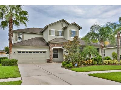 Wesley Chapel Single Family Home For Sale: 3211 Grassglen Place