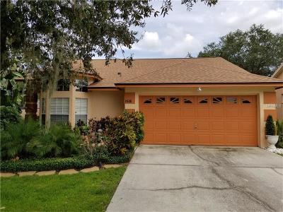 Valrico Single Family Home For Sale: 2506 Gotham Way