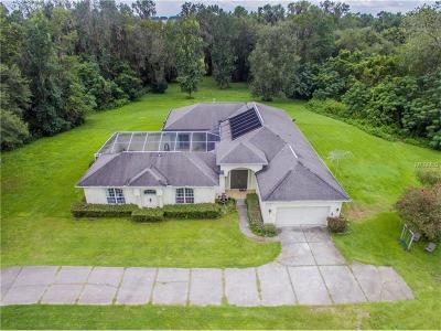 Dade City Single Family Home For Sale: 31228 Blanton Road