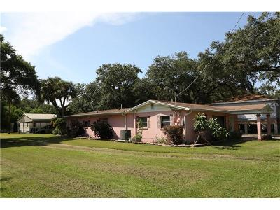 Tampa Single Family Home For Sale: 7217 S Kissimmee Street