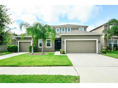 Riverview Single Family Home For Sale: 12113 Streambed Drive