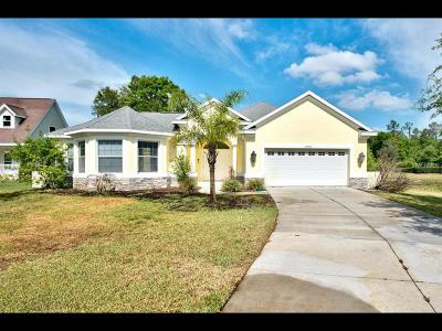 Lutz Single Family Home For Sale: 19930 Dolores Ann Court