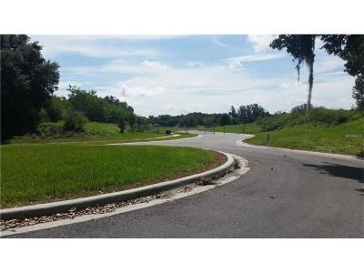 Lithia Residential Lots & Land For Sale: 13724 Hobson Simmons Road