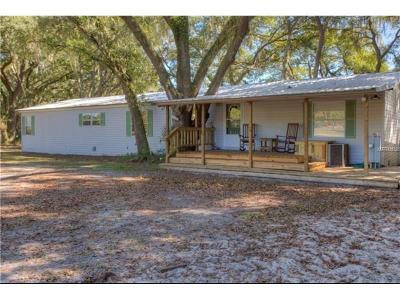Thonotosassa Single Family Home For Sale: 12705 Chihuahua Court