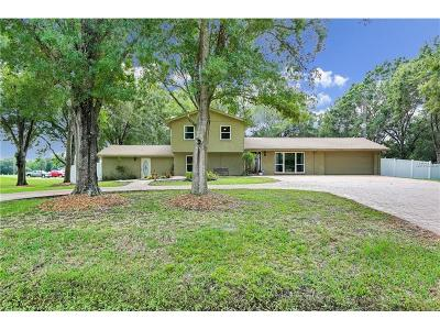 Wesley Chapel Single Family Home For Sale: 6033 Country Club Road