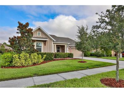 Apollo Beach Single Family Home For Sale: 6708 Park Strand Drive