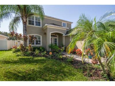 Land O Lakes FL Single Family Home For Sale: $295,000