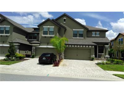 Weslely Chapel, Wesley Chapel Townhouse For Sale: 4862 Wandering Way