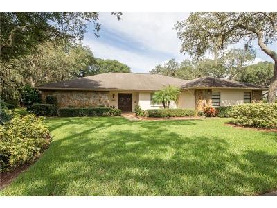 Valrico Single Family Home For Sale: 2907 Chelsea Woods Drive