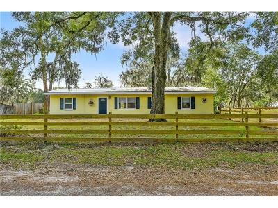 Lithia FL Single Family Home For Sale: $335,000