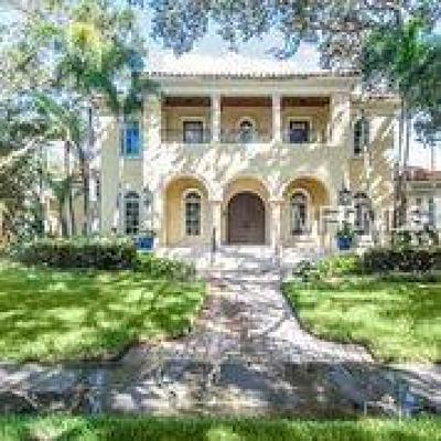 Tampa Single Family Home For Sale: 4604 S Richards Court