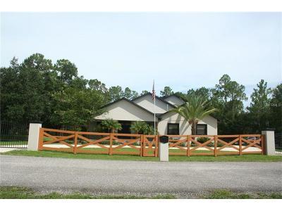 Wimauma Single Family Home For Sale: 3104 Turkey Walk Lane